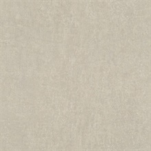 Segwick Taupe Speckled Textured Wallpaper