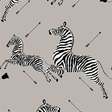 Silver Zebra Wallpaper