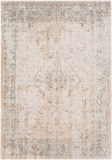 SNW2300 Stonewashed - Area Rug