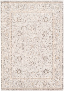 SNW2302 Stonewashed - Area Rug