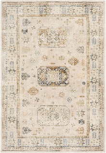 SNW2305 Stonewashed - Area Rug