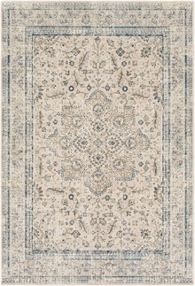 SNW2307 Stonewashed - Area Rug