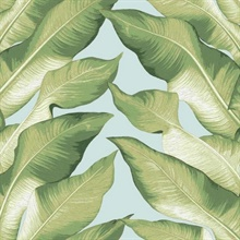 Soft Blue Beverly Hills Large Banana Leaf Wallpaper