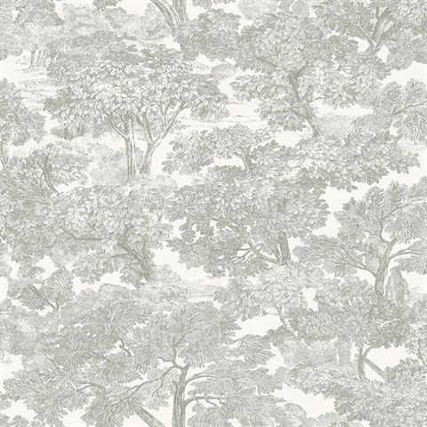 Spinney Grey Toile