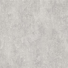 Stark Light Grey Texture