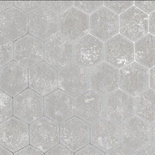 Starling Grey Honeycomb Wallpaper