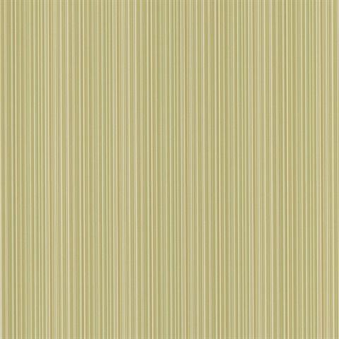 Stria Light Green Stripe Wallpaper