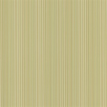 Stria Light Green Stripe Wallpaper