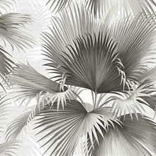 Summer Palm Charcoal Tropical Leaf Wallpaper