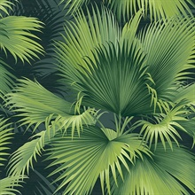 Summer Palm Dark Green Tropical Leaf Wallpaper