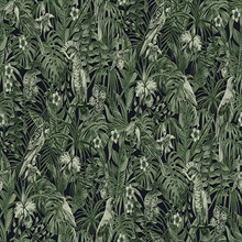 Susila Green Textured Tropical Leaves with Birds Wallpaper