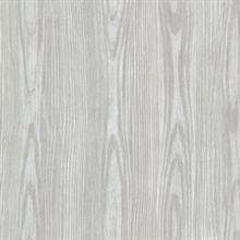 Tanice Blue Faux Wood Texture