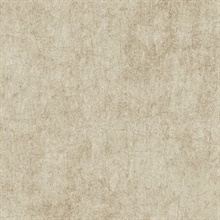 Taupe Haven Texture