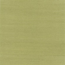 Terumi Light Green Grasscloth
