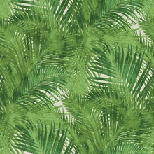 Tina Green Palms Wallpaper