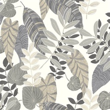 Tropicana Tropical Leaf Taupe Wallpaper