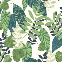 Tropicana Tropical Leaf White Wallpaper