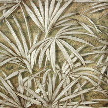 Veneto Brown Palm Tree Wallpaper