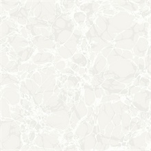 White Champaign Oil and Water Wallpaper