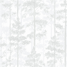 White Pine Tree Wallpaper