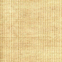 Xiao Hong Light Brown Grasscloth