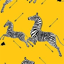 Yellow Zebra Wallpaper