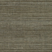 Yunnan Brown Grasscloth